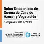 2018-2019 – Informes